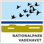 BO_C_NationalpVadehavet LOW